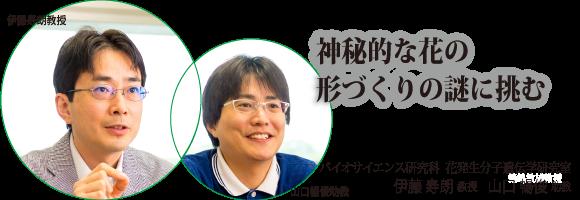 伊藤寿朗教授、山口暢俊助教 奈...